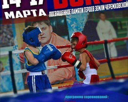 Прошло первенство Иркутской области по БОКСУ среди юношей 2002 – 2003 г.р.