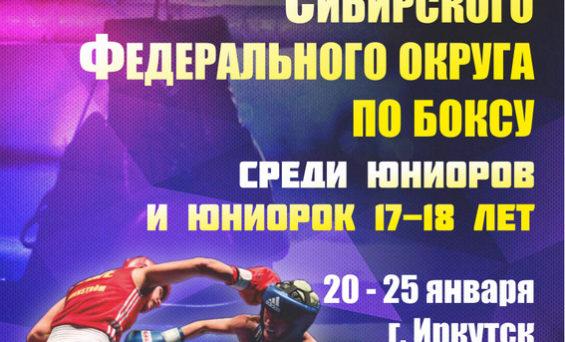 Первенство СФО по боксу среди юниоров и юниорок